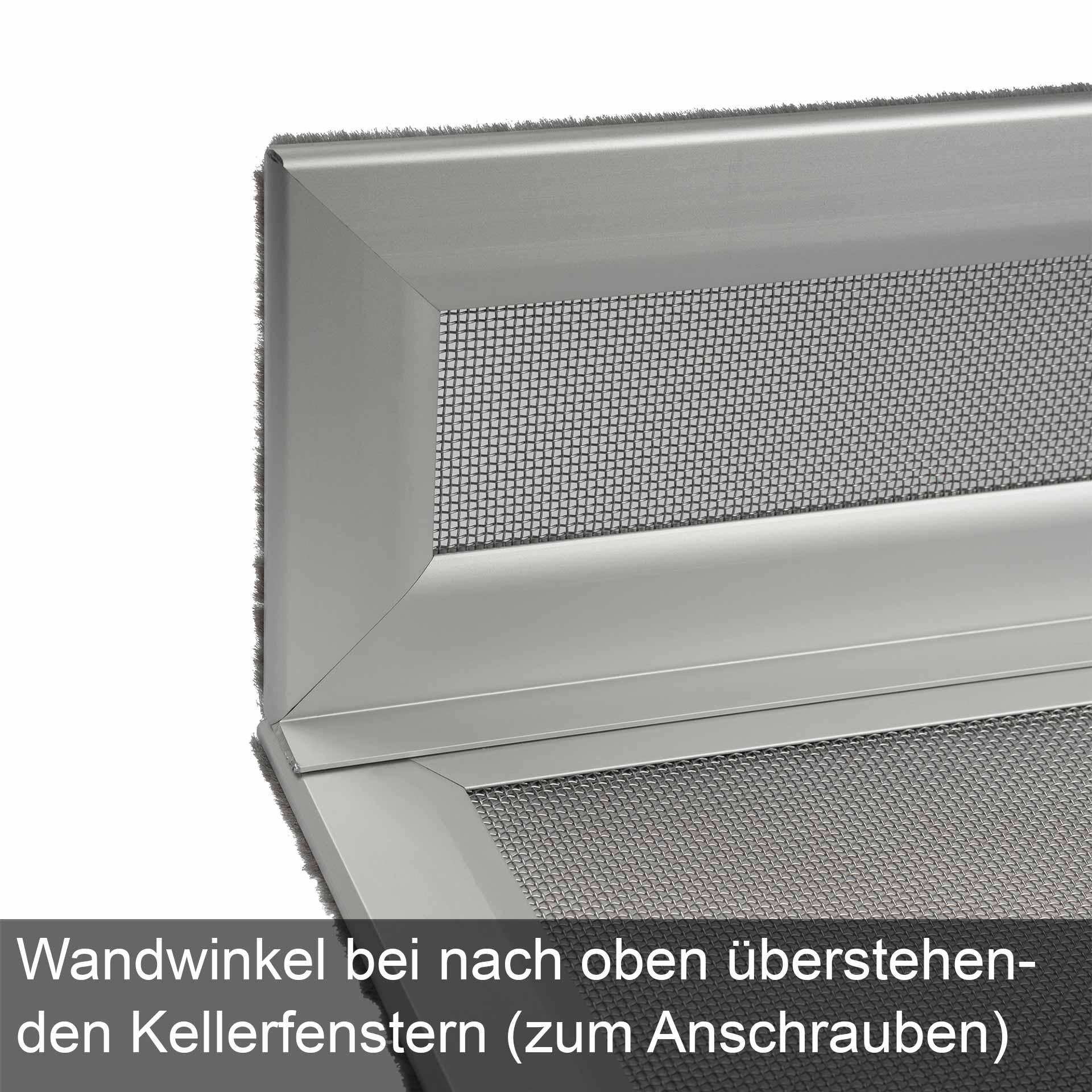 Lichtschachteinsatz, auch mit Sicherungskette für mehr Sicherheit | Cleanline-Safe