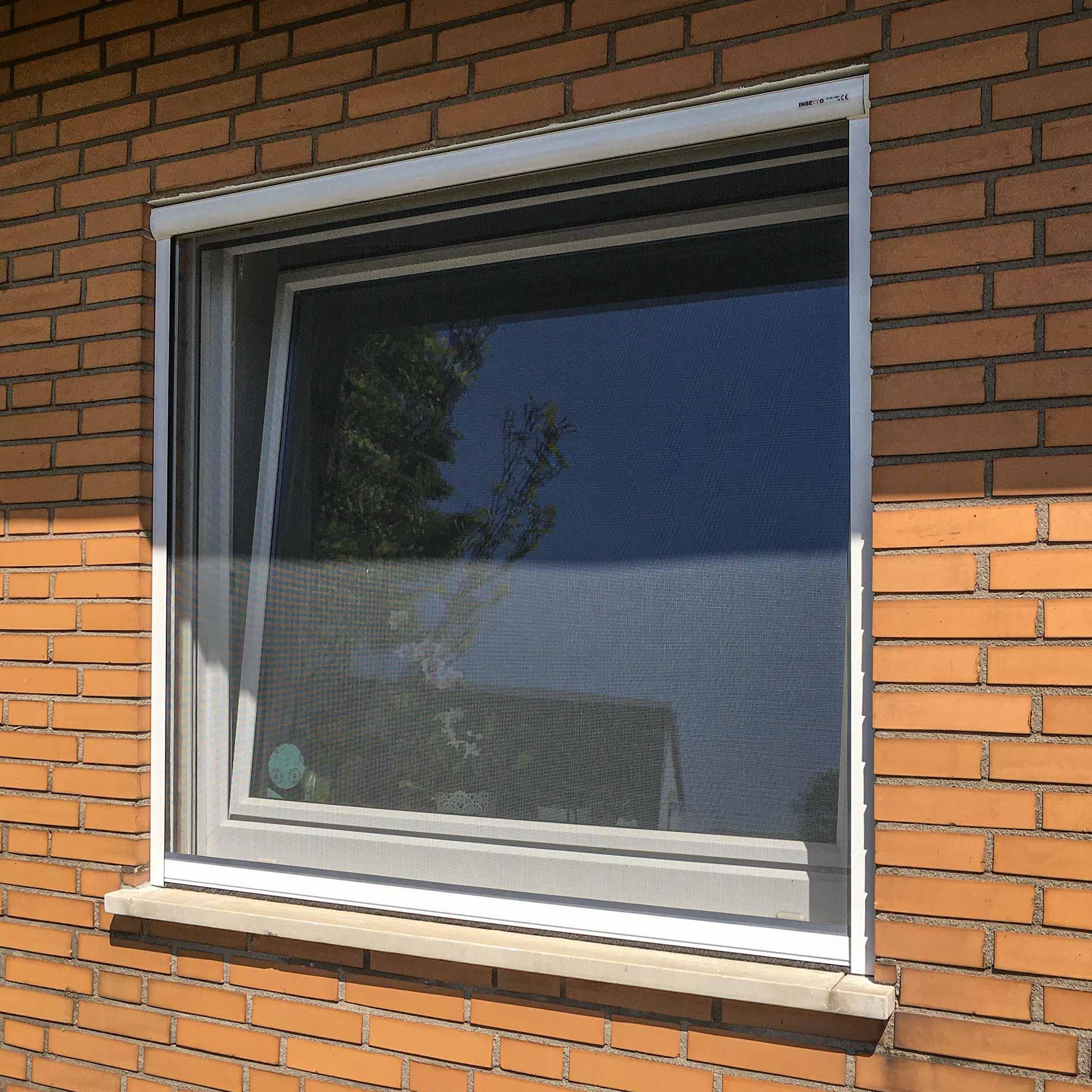 Insektenschutzrollo mit einstellbarer Federspannung für Fenster | Topline