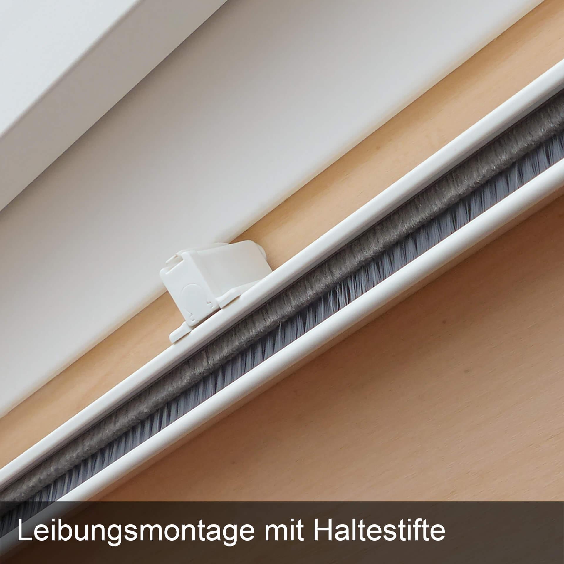 Unser Bestes für Dachfenster   abgerundete Ecken   Bürstendichtung    StarlineFix