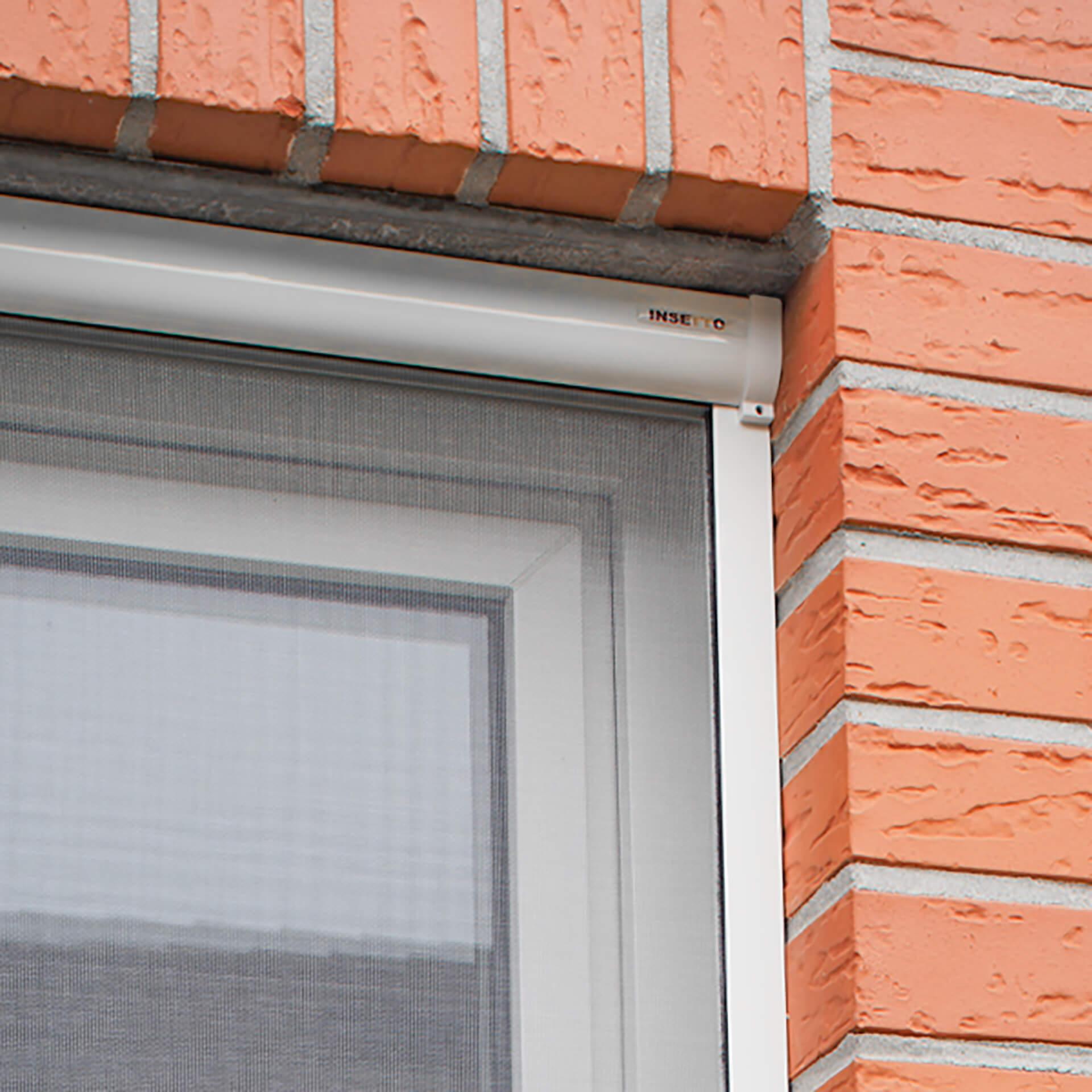 Insektenschutzrollo für Fenster   Rollokasten auch zum Einklemmen   Adria
